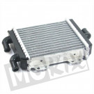 RADIATEUR PEUGEOT SPEEDFIGHT 3 ORG